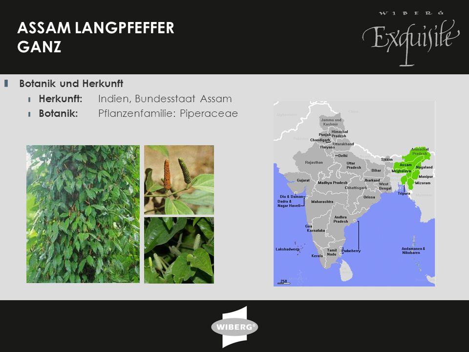 21 ASSAM LANGPFEFFER GANZ Botanik und Herkunft Herkunft: Indien, Bundesstaat Assam Botanik: Pflanzenfamilie: Piperaceae