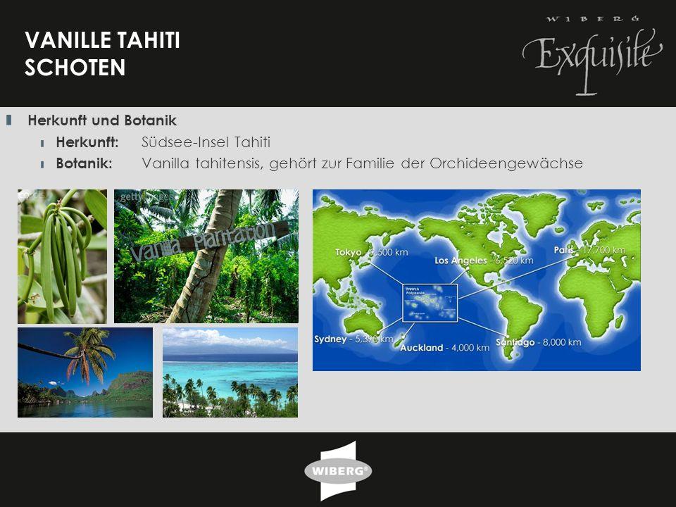 30 VANILLE TAHITI SCHOTEN Herkunft und Botanik Herkunft: Südsee-Insel Tahiti Botanik: Vanilla tahitensis, gehört zur Familie der Orchideengewächse