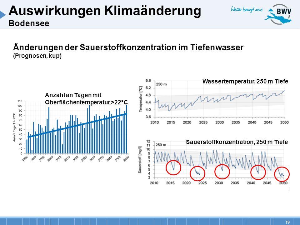 19 Änderungen der Sauerstoffkonzentration im Tiefenwasser (Prognosen, kup) Auswirkungen Klimaänderung Bodensee Wassertemperatur, 250 m Tiefe Sauerstof