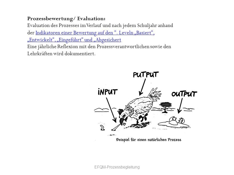 Prozessbewertung/ Evaluation: Evaluation des Prozesses im Verlauf und nach jedem Schuljahr anhand der Indikatoren einer Bewertung auf den. Leveln Basi