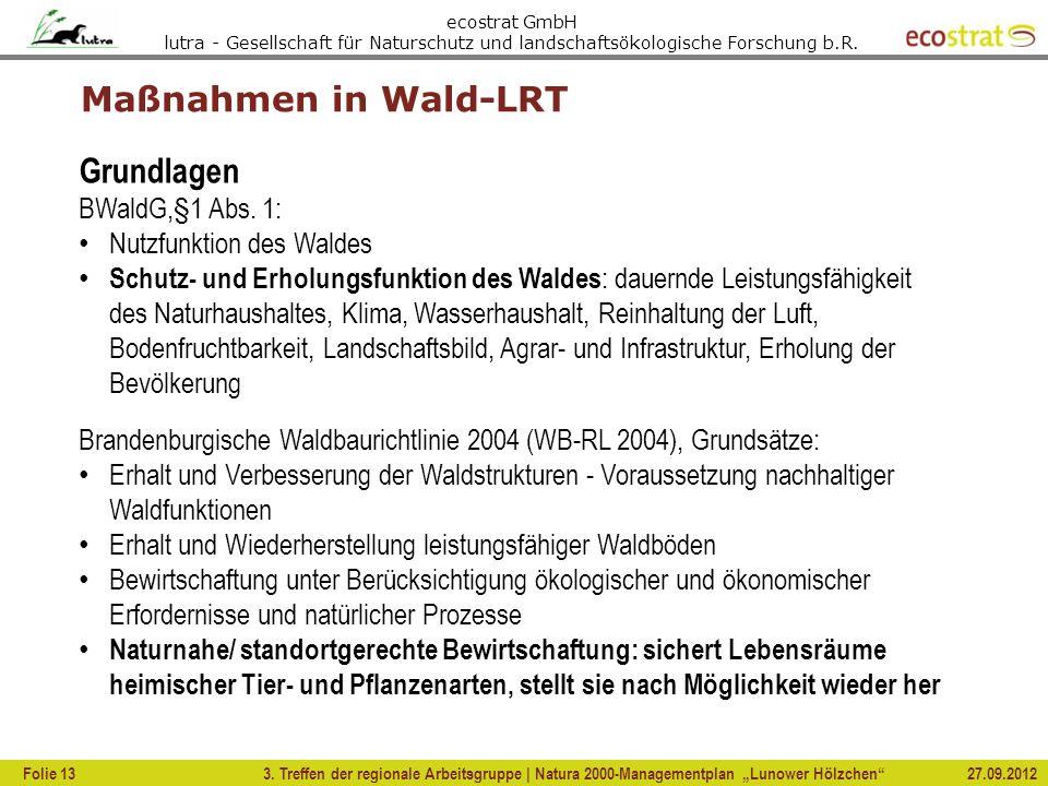 ecostrat GmbH lutra - Gesellschaft für Naturschutz und landschaftsökologische Forschung b.R. 3. Treffen der regionale Arbeitsgruppe | Natura 2000-Mana