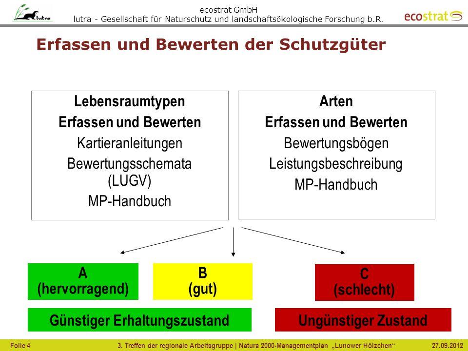 ecostrat GmbH lutra - Gesellschaft für Naturschutz und landschaftsökologische Forschung b.R. Erfassen und Bewerten der Schutzgüter 3. Treffen der regi
