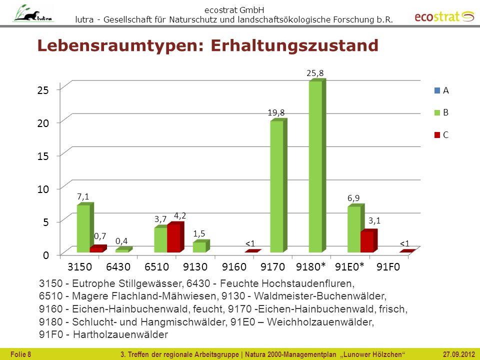 ecostrat GmbH lutra - Gesellschaft für Naturschutz und landschaftsökologische Forschung b.R. Lebensraumtypen: Erhaltungszustand 3. Treffen der regiona