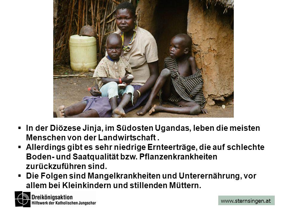 www.sternsingen.at In der Diözese Jinja, im Südosten Ugandas, leben die meisten Menschen von der Landwirtschaft. Allerdings gibt es sehr niedrige Ernt