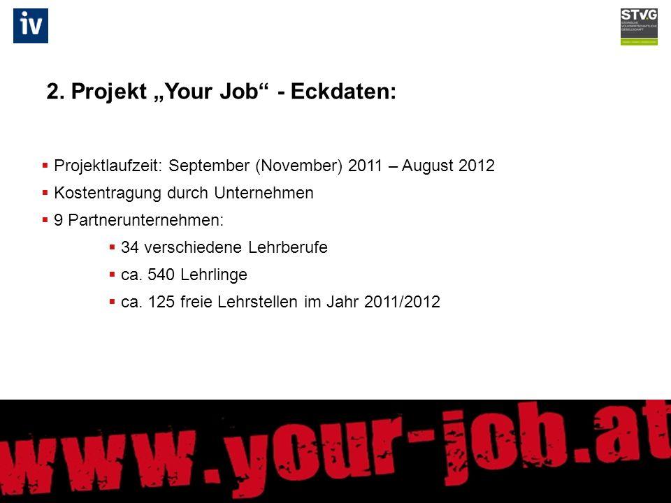 Projektlaufzeit: September (November) 2011 – August 2012 Kostentragung durch Unternehmen 9 Partnerunternehmen: 34 verschiedene Lehrberufe ca.