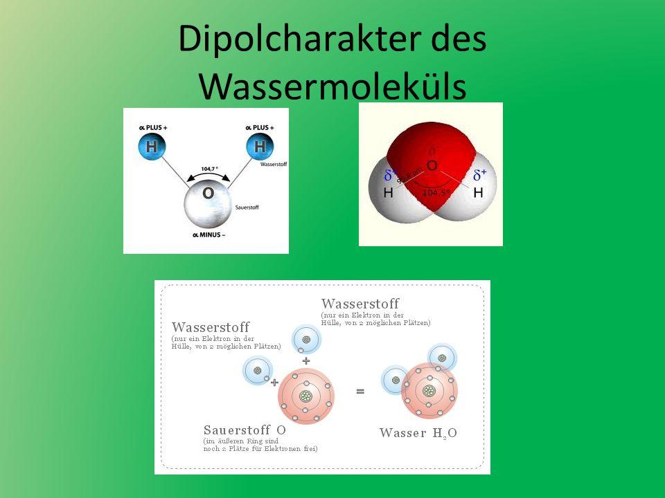 Dipolcharakter des Wassermoleküls