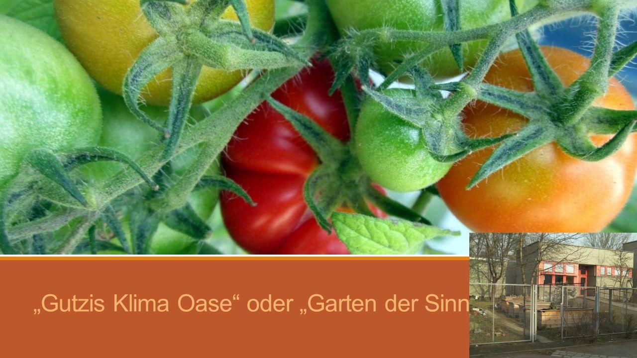 2009: Baustelle Unser Garten: -Länge 21m / Breite ca.