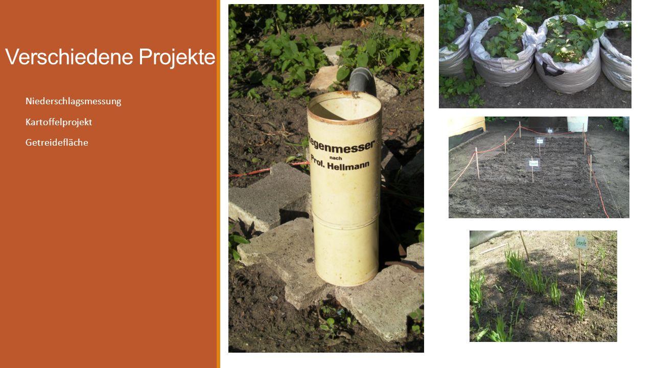 Verschiedene Projekte Niederschlagsmessung Kartoffelprojekt Getreidefläche