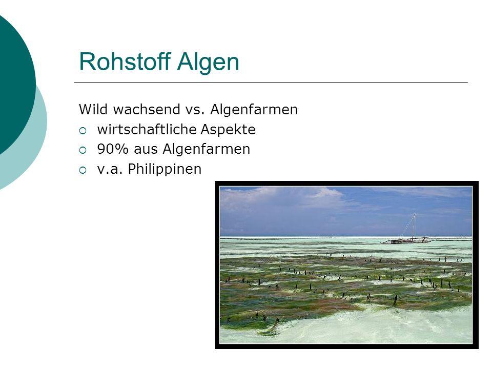 Rohstoff Algen Wild wachsend vs. Algenfarmen wirtschaftliche Aspekte 90% aus Algenfarmen v.a. Philippinen