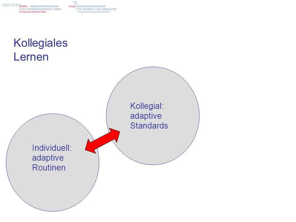 Kollegiales Lernen Individuell: adaptive Routinen Kollegial: adaptive Standards