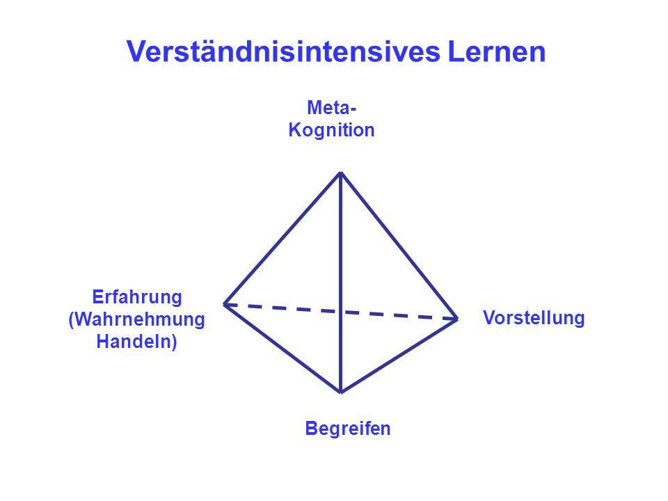 Meta- Kognition Erfahrung (Wahrnehmung Handeln) Begreifen Vorstellung Verständnisintensives Lernen