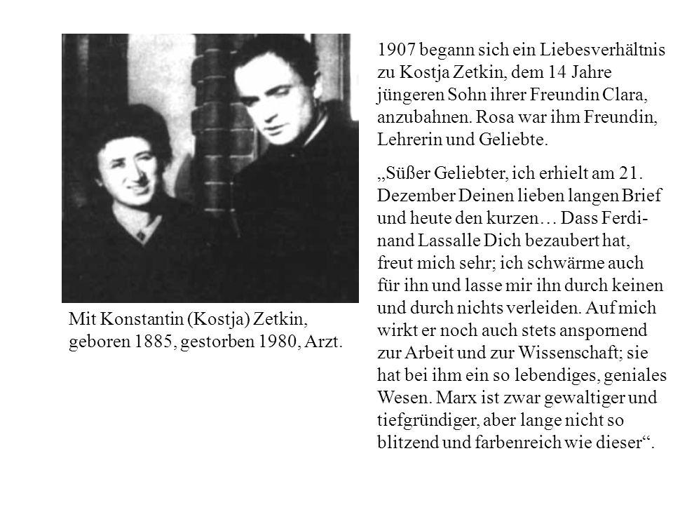 1907 begann sich ein Liebesverhältnis zu Kostja Zetkin, dem 14 Jahre jüngeren Sohn ihrer Freundin Clara, anzubahnen. Rosa war ihm Freundin, Lehrerin u
