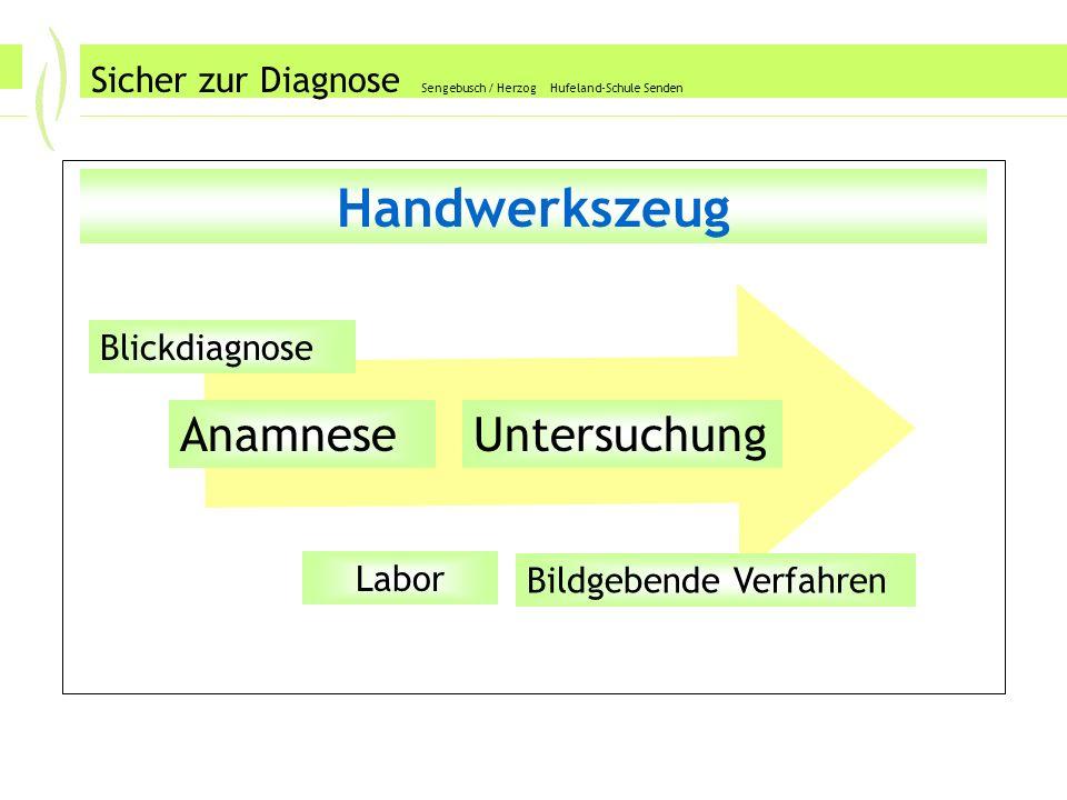 Sicher zur Diagnose Sengebusch / Herzog Hufeland-Schule Senden Handwerkszeug AnamneseUntersuchung Labor Blickdiagnose Bildgebende Verfahren
