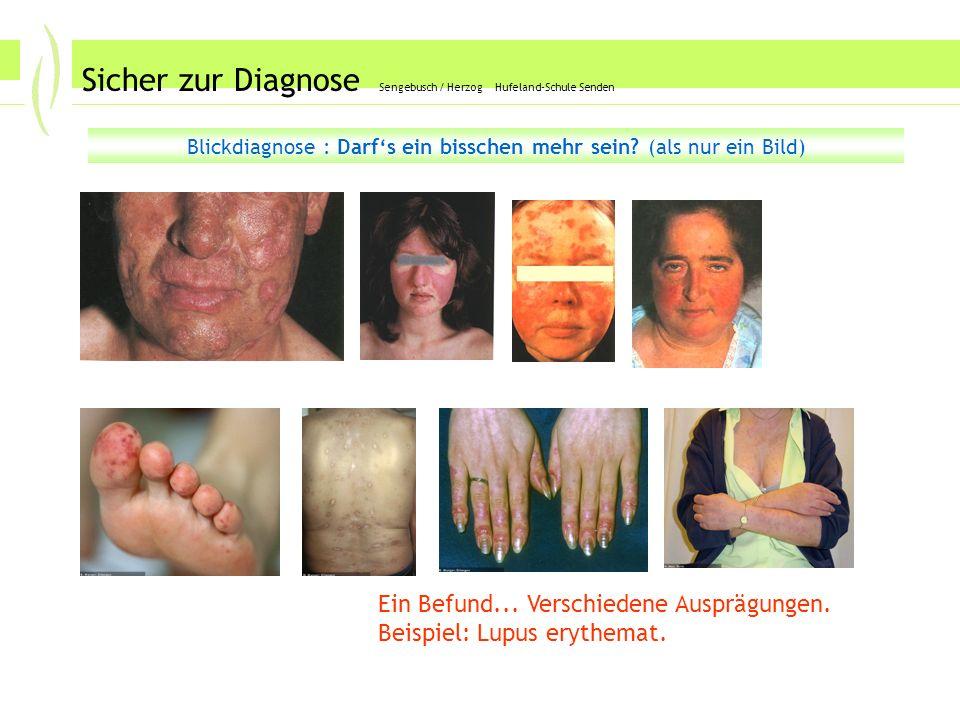 Sicher zur Diagnose Sengebusch / Herzog Hufeland-Schule Senden Blickdiagnose : Darfs ein bisschen mehr sein.