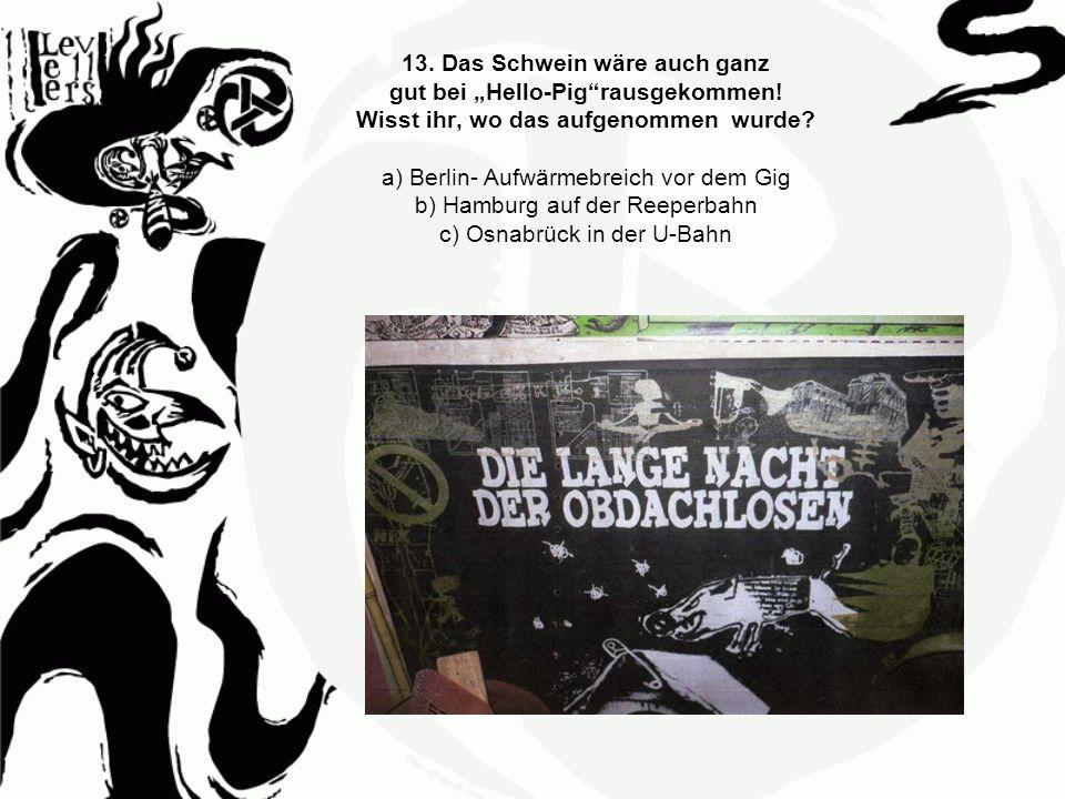 13. Das Schwein wäre auch ganz gut bei Hello-Pigrausgekommen! Wisst ihr, wo das aufgenommen wurde? a) Berlin- Aufwärmebreich vor dem Gig b) Hamburg au