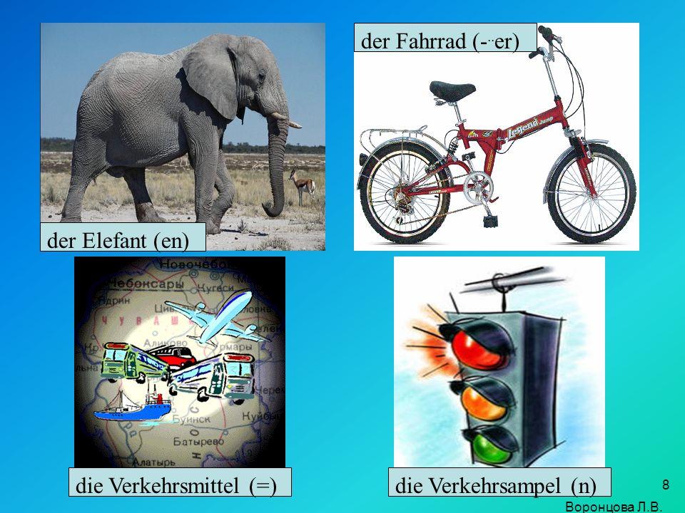 8 der Elefant (en) der Fahrrad (-.. er) die Verkehrsmittel (=)die Verkehrsampel (n) Воронцова Л.В.