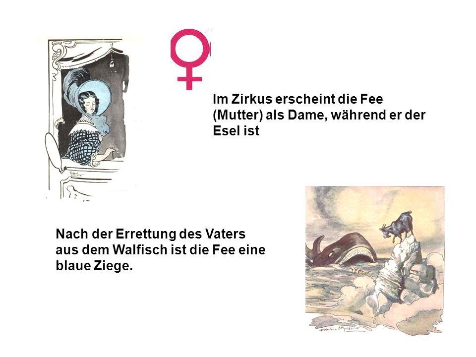 Im Zirkus erscheint die Fee (Mutter) als Dame, während er der Esel ist Nach der Errettung des Vaters aus dem Walfisch ist die Fee eine blaue Ziege.