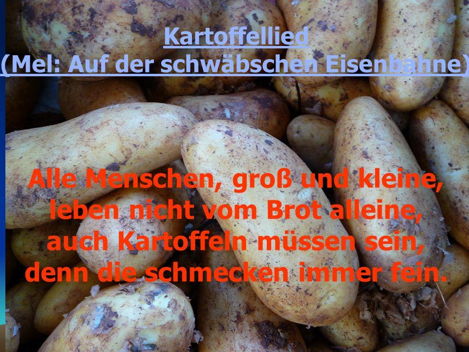 Trulla, trulla trulla la, trulla trulla trulla la Auch Kartoffeln müssen sein, denn die schmecken immer fein.