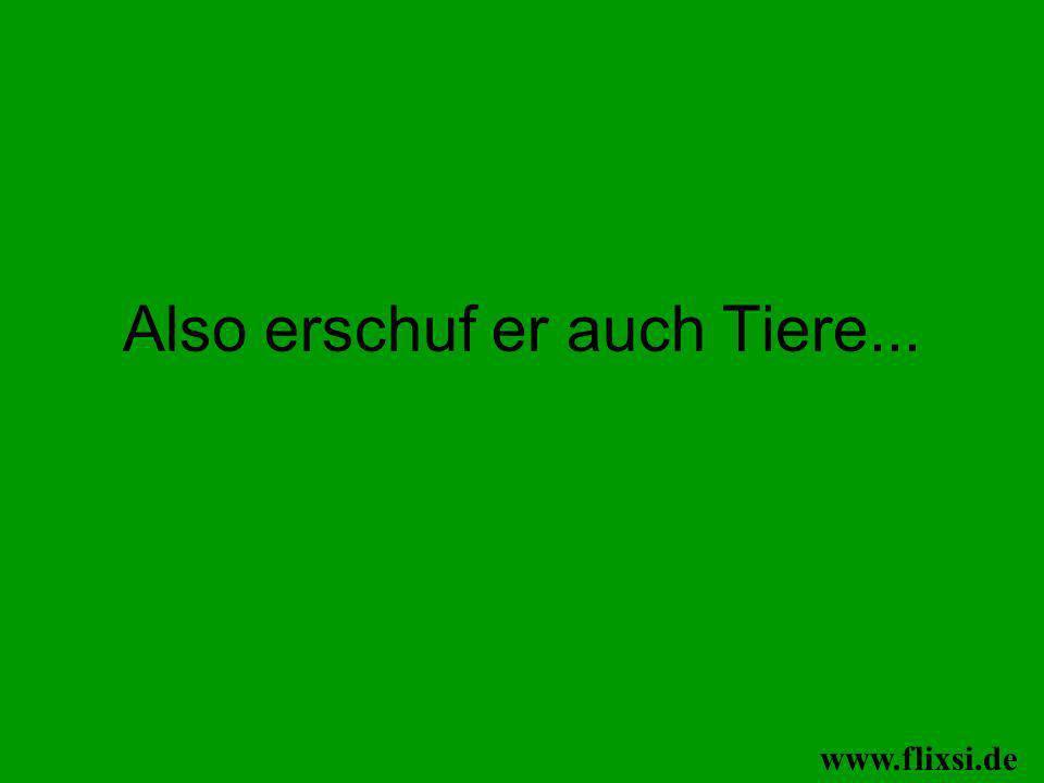 ...das war …. www.flixsi.de