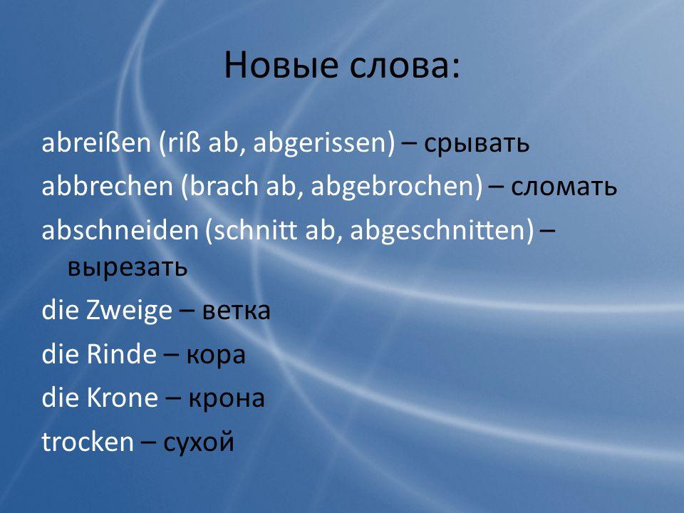 Новые слова: abreißen (riß ab, abgerissen) – срывать abbrechen (brach ab, abgebrochen) – сломать abschneiden (schnitt ab, abgeschnitten) – вырезать di