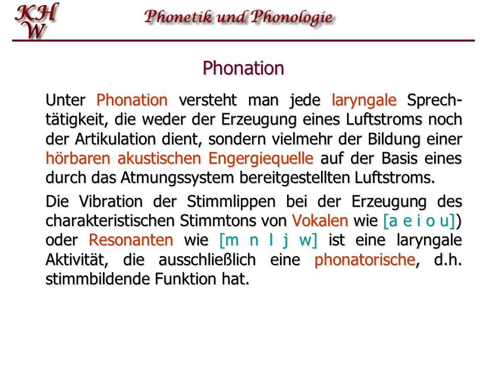 Phonation Unter Phonation versteht man jede laryngale Sprech- tätigkeit, die weder der Erzeugung eines Luftstroms noch der Artikulation dient, sondern