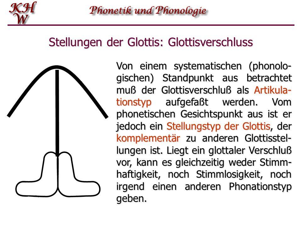 Stellungen der Glottis: Glottisverschluss Von einem systematischen (phonolo- gischen) Standpunkt aus betrachtet muß der Glottisverschluß als Artikula-