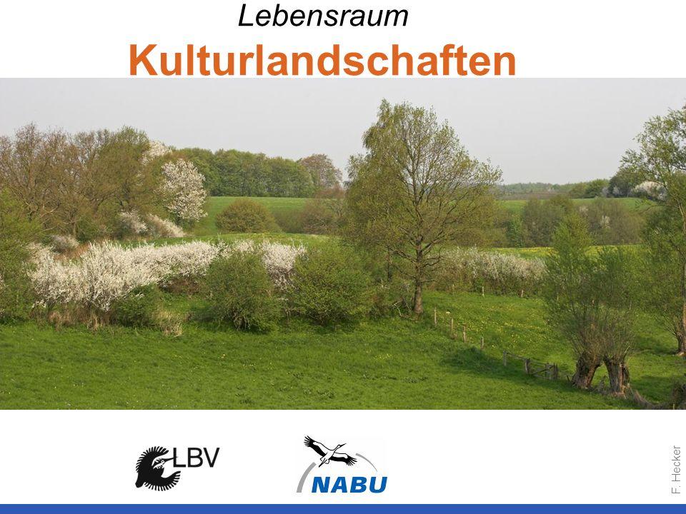 Lebensraum Kulturlandschaften F. Hecker