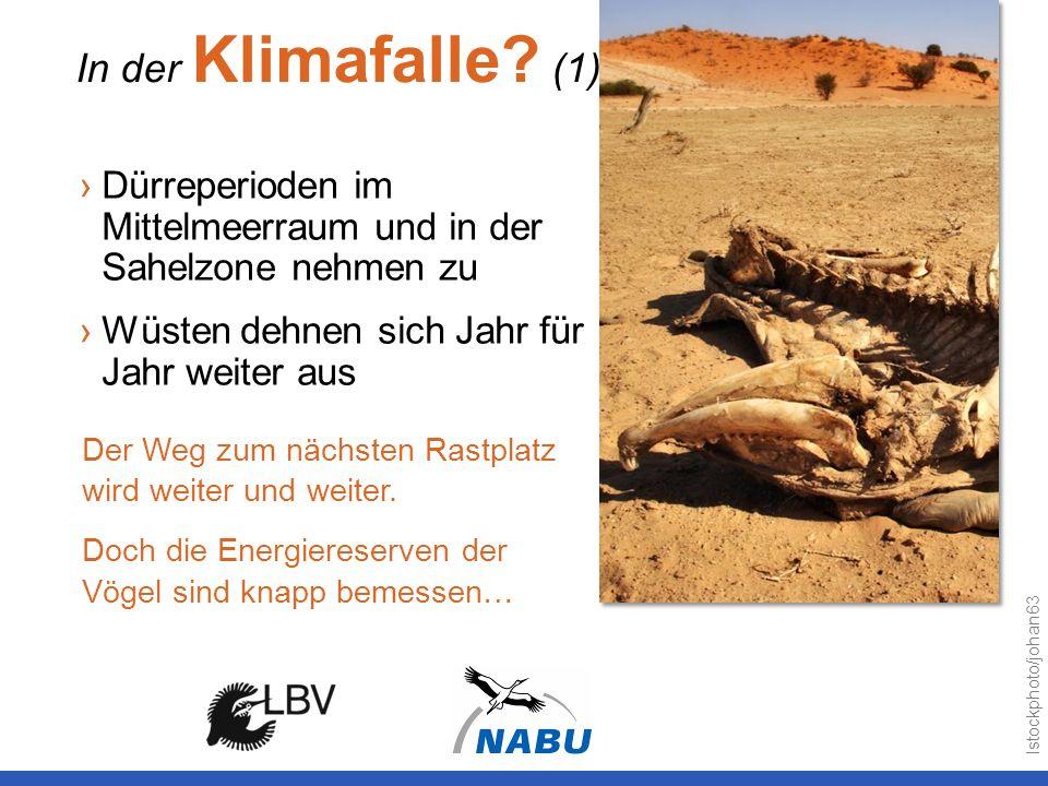In der Klimafalle? (1) Dürreperioden im Mittelmeerraum und in der Sahelzone nehmen zu Wüsten dehnen sich Jahr für Jahr weiter aus Der Weg zum nächsten