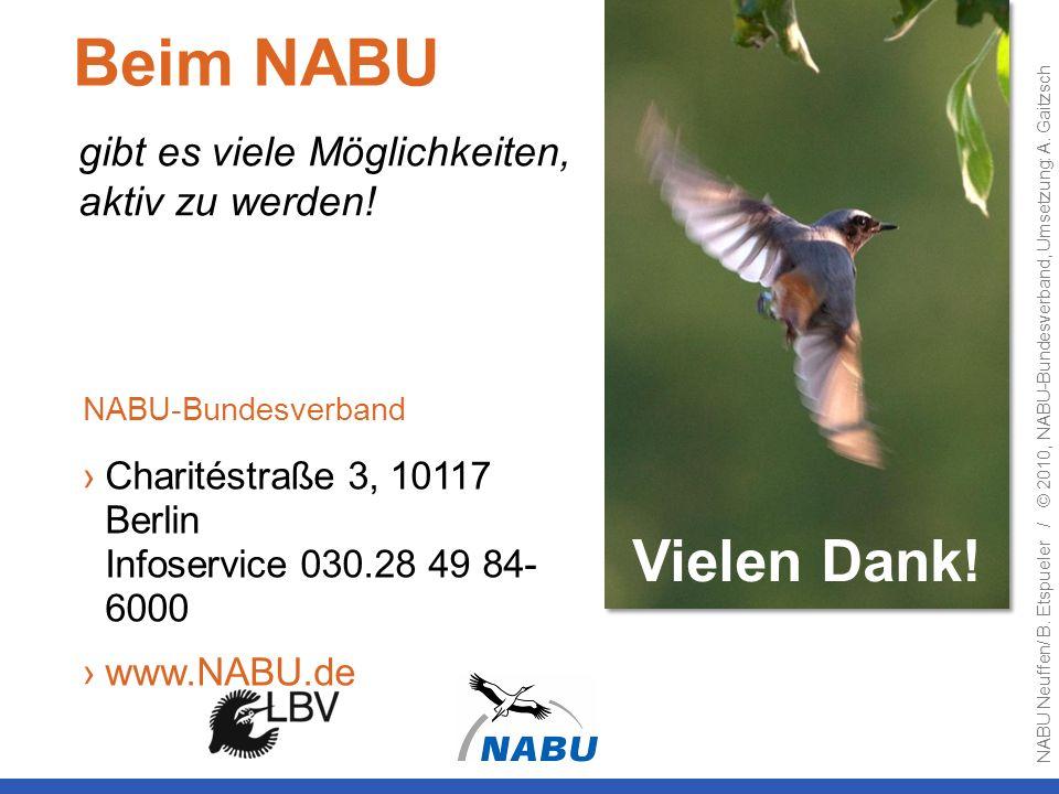 gibt es viele Möglichkeiten, aktiv zu werden! Vielen Dank! Beim NABU NABU-Bundesverband Charitéstraße 3, 10117 Berlin Infoservice 030.28 49 84- 6000 w