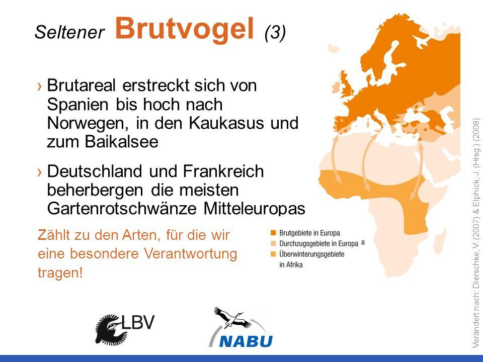 Seltener Brutvogel (3) Brutareal erstreckt sich von Spanien bis hoch nach Norwegen, in den Kaukasus und zum Baikalsee Deutschland und Frankreich beher