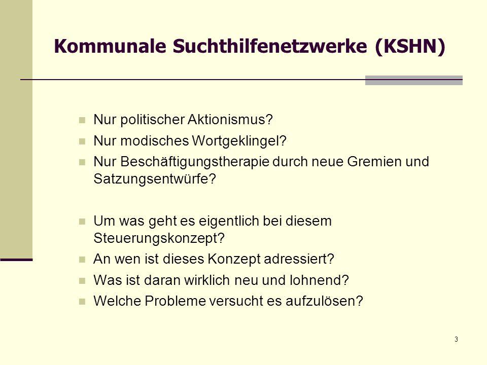 14 Um was geht es beim politischen Konzept der KSHN.