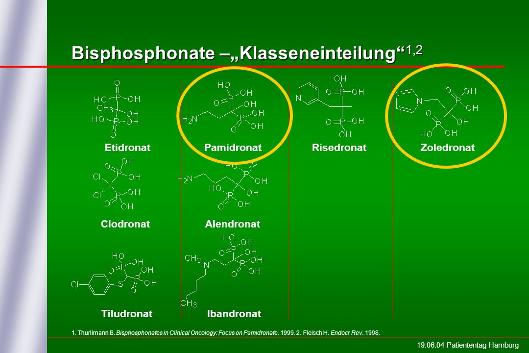 19.06.04 Patiententag Hamburg 1. Thurlimann B. Bisphosphonates in Clinical Oncology: Focus on Pamidronate. 1999. 2. Fleisch H. Endocr Rev. 1998. Bisph