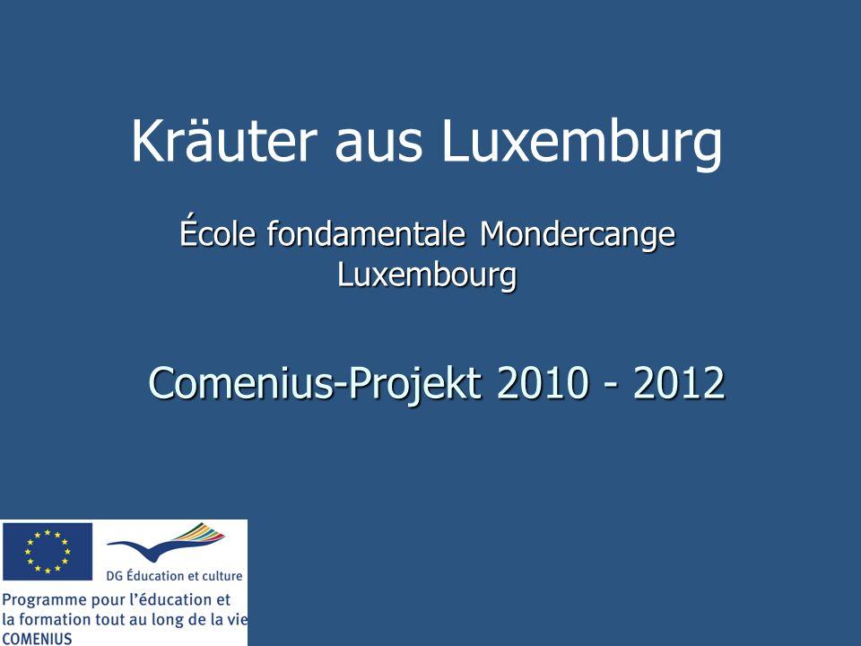 Comenius-Projekt 2010 - 2012 École fondamentale Mondercange Luxembourg Kräuter aus Luxemburg