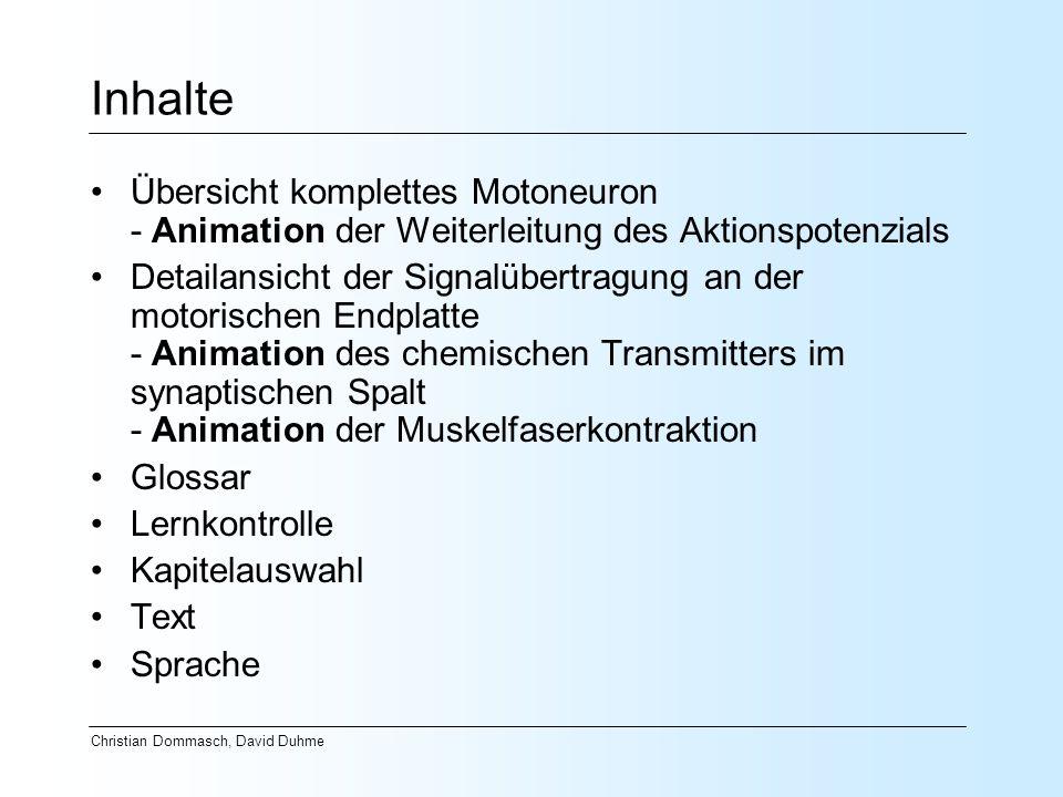 Christian Dommasch, David Duhme Inhalte Übersicht komplettes Motoneuron - Animation der Weiterleitung des Aktionspotenzials Detailansicht der Signalüb