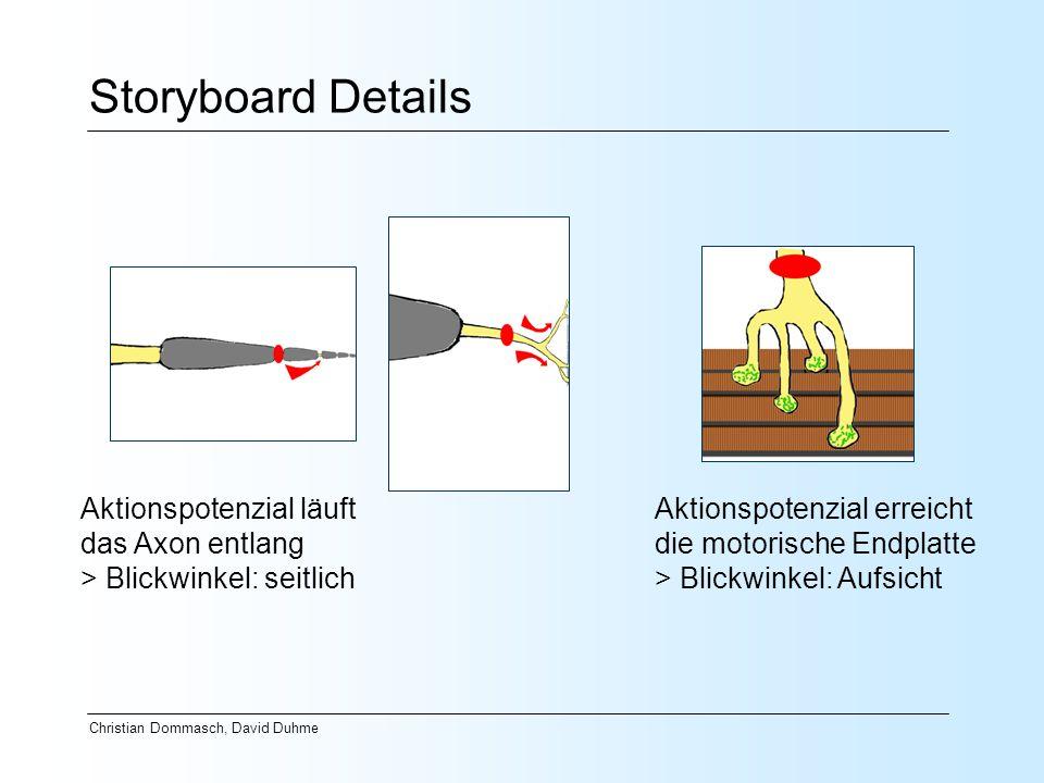 Christian Dommasch, David Duhme Storyboard Details Aktionspotenzial läuft das Axon entlang > Blickwinkel: seitlich Aktionspotenzial erreicht die motor