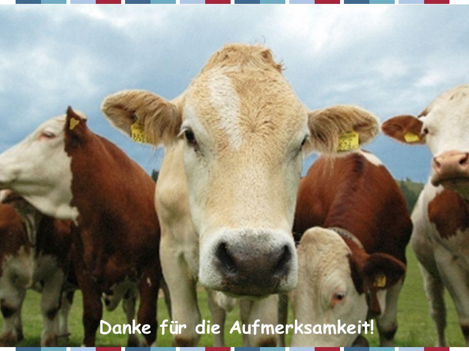 ZAR-Seminar 2007 – Christian Fürst Danke für die Aufmerksamkeit!