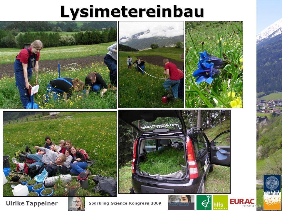 Ulrike Tappeiner Sparkling Science Kongress 2009Lysimetereinbau