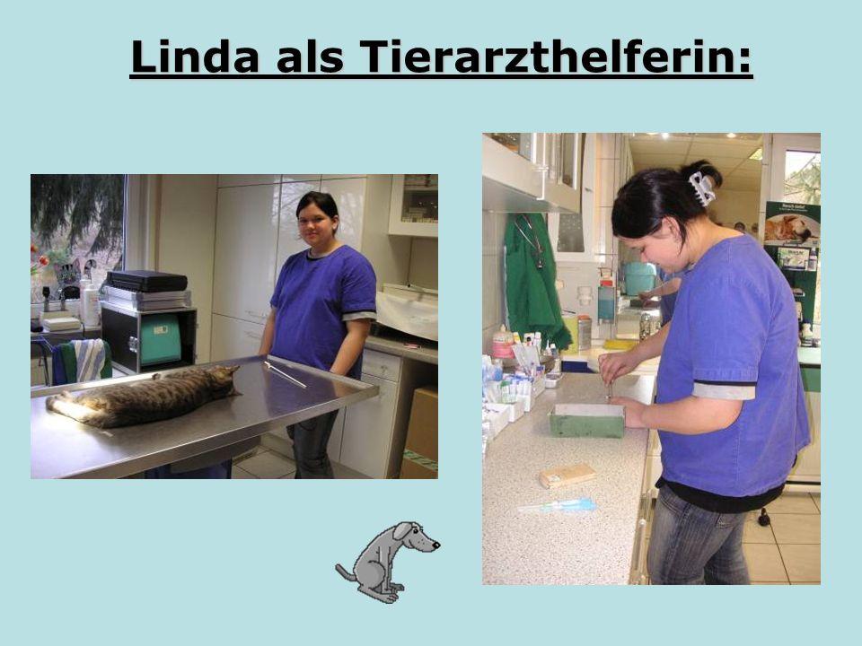 Linda als Tierarzthelferin: