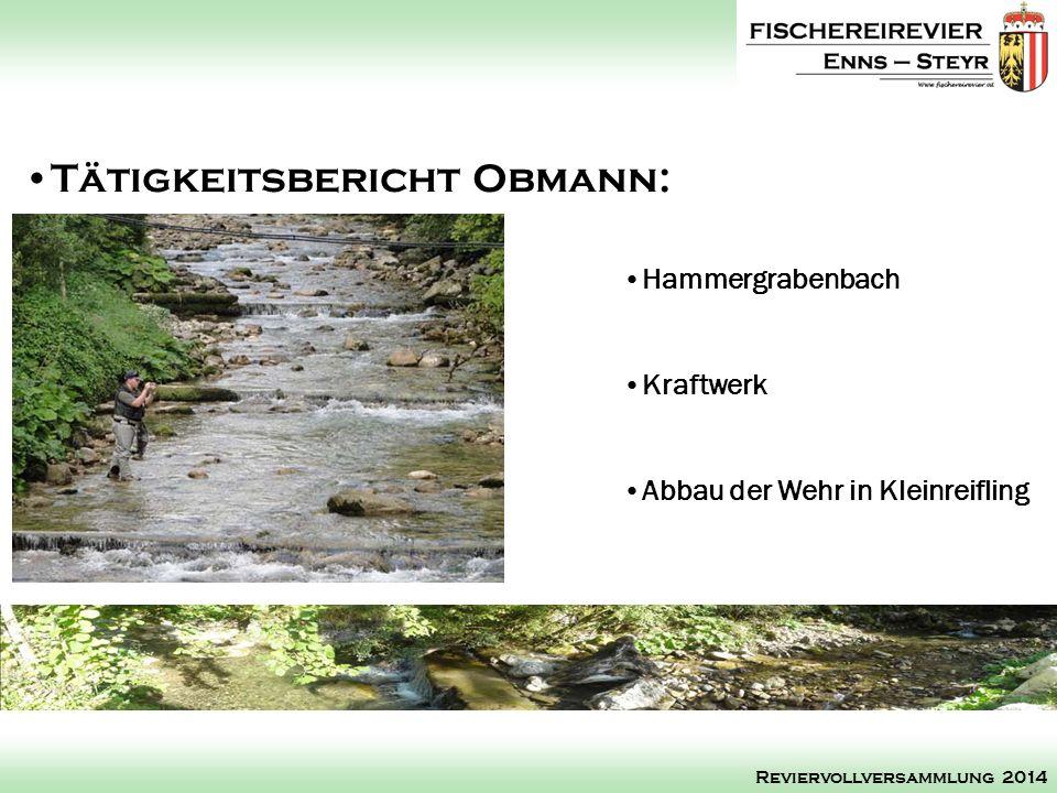 Hammergrabenbach Kraftwerk Abbau der Wehr in Kleinreifling Tätigkeitsbericht Obmann: Reviervollversammlung 2014