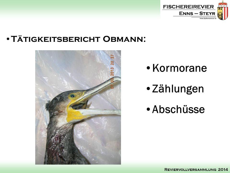 Kormorane Zählungen Abschüsse Tätigkeitsbericht Obmann: Reviervollversammlung 2014