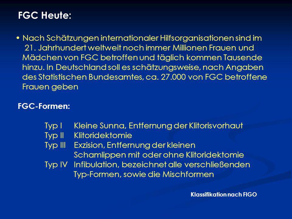 1.Öffentlicher westlicher Diskurs FGC-Betroffenen in Deutschland müssen oft mit der paradoxen Tatsache leben: In ihrer eigenen Kultur und Kontext ist FGC: identitätsstiftend sozial integrierend ein Schritt zur vollständigen Weiblichkeit Wertschätzung und gesellschaftliche Akzeptanz alle Frauen in ihrer Umgebung sind FGC-Betroffene Die Probleme der FGC-Betroffenen anhand zweier Aspekte: Öffentlicher Diskurs und das Gesundheitssystem