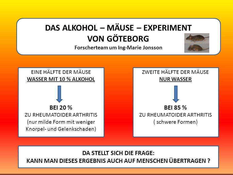 DAS ALKOHOL – MÄUSE – EXPERIMENT VON GÖTEBORG Forscherteam um Ing-Marie Jonsson EINE HÄLFTE DER MÄUSE WASSER MIT 10 % ALKOHOL BEI 20 % ZU RHEUMATOIDER