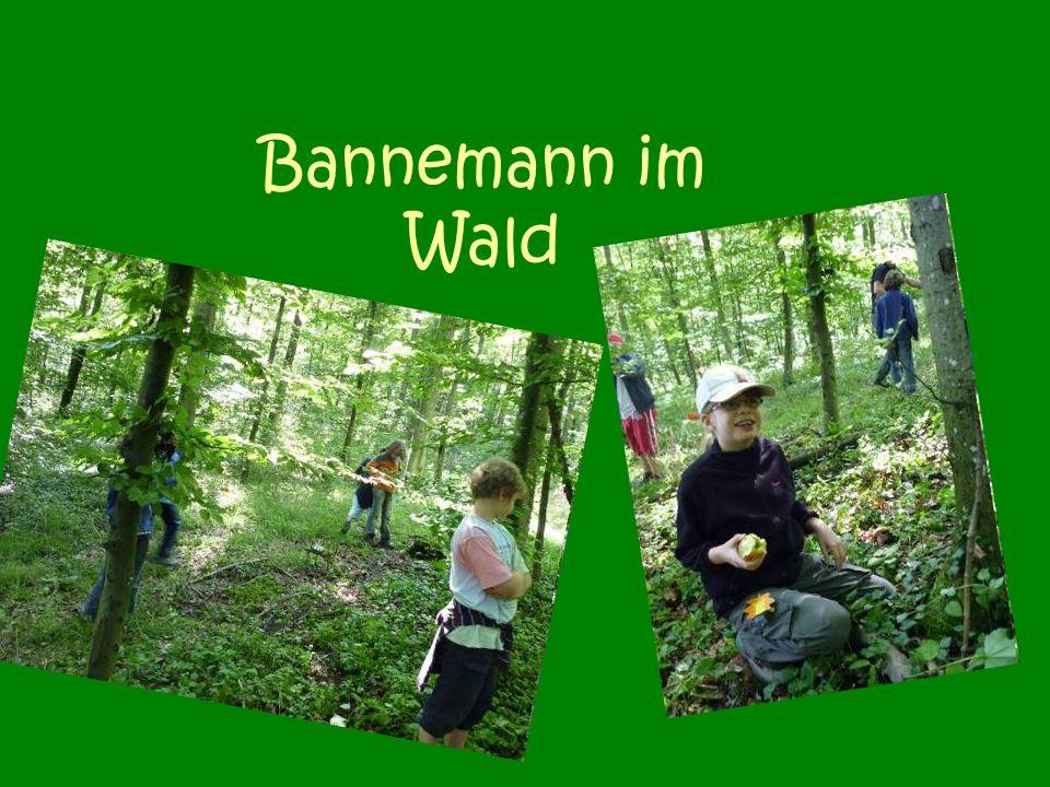 Bannemann im Wald