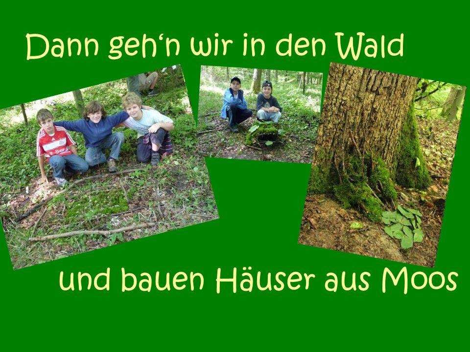 Dann gehn wir in den Wald und bauen Häuser aus Moos