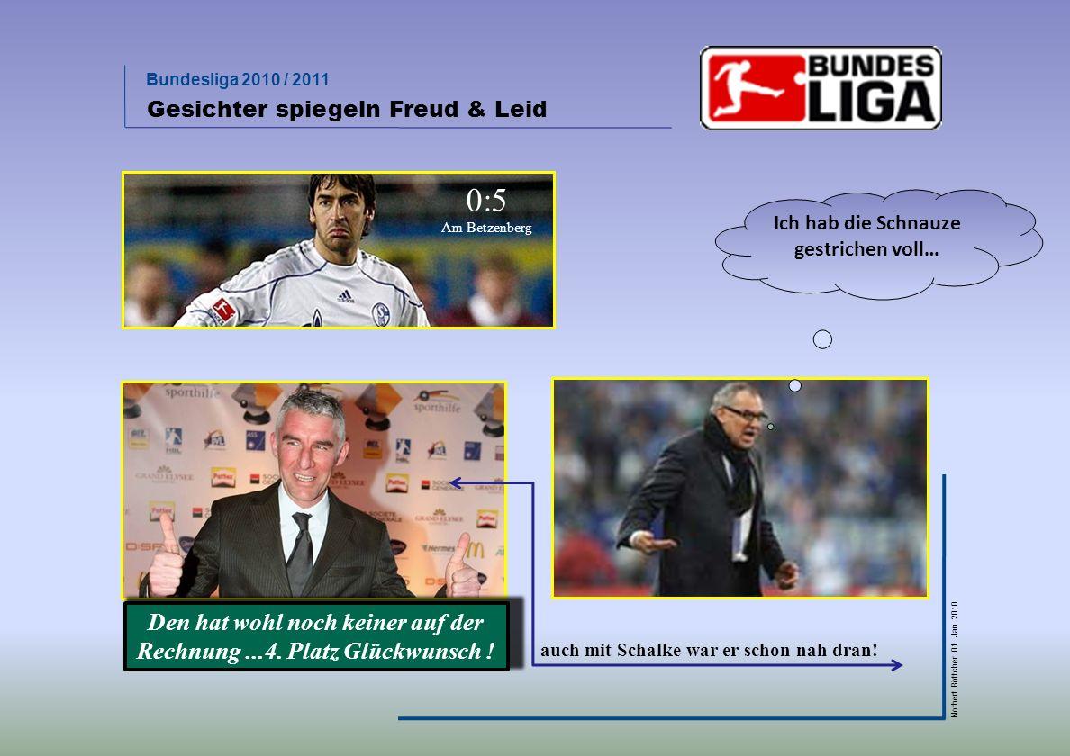 Bundesliga 2010 / 2011 Norbert Böttcher 01. Jan. 2010 wer wird Meister? …nur der BVB