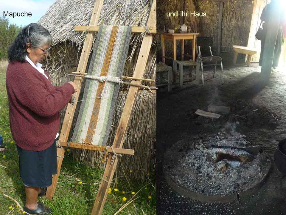 Mapucheund ihr Haus