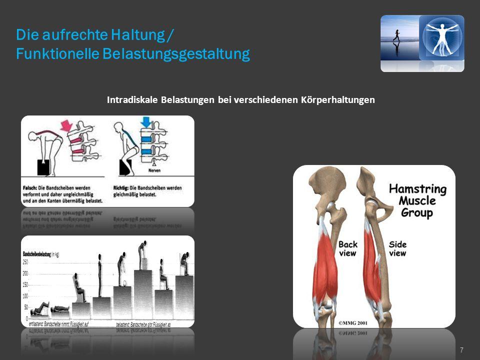 Intradiskale Belastungen bei verschiedenen Körperhaltungen 7 Die aufrechte Haltung / Funktionelle Belastungsgestaltung
