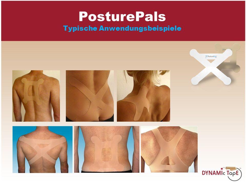 PosturePals Typische Anwendungsbeispiele