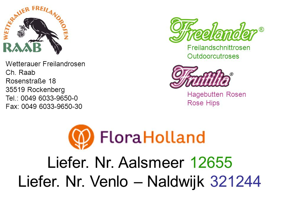 Freilandschnittrosen Outdoorcutroses ® Hagebutten Rosen Rose Hips Wetterauer Freilandrosen Ch.