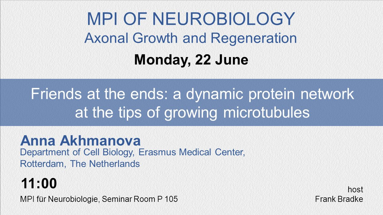 Anna Akhmanova Friends at the ends: a dynamic protein network at the tips of growing microtubules Monday, 22 June MPI OF NEUROBIOLOGY Axonal Growth an